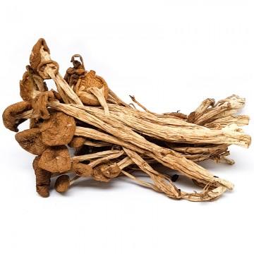 Tea Tree Mushroom (Cha Shu Gu)