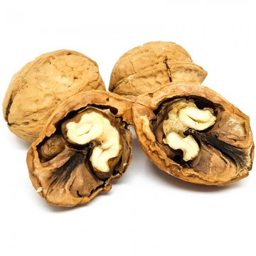 Roasted Walnut With Shells (Buttered And Salted)