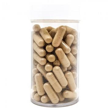 American Ginseng & Pseudo Ginseng Powder (30 capsules)