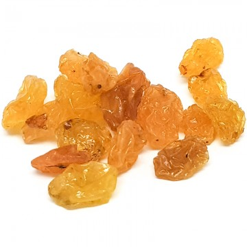 Yellow Raisin (small)