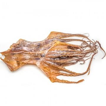 Octopus (medium)